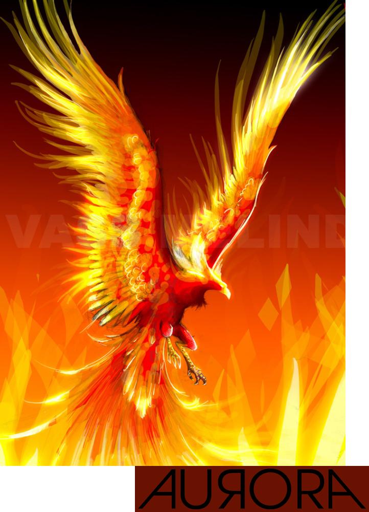 The phoenix render fantastique renders phenix phoenix faisan cendres ardent pinteres - Photo de phenix ...