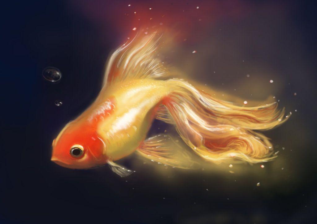 Картинки на аву рыбы