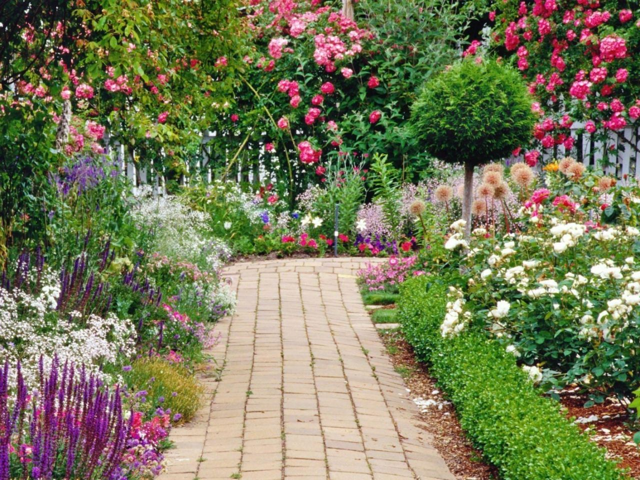 Landscape design, flower garden: brick path through a double border