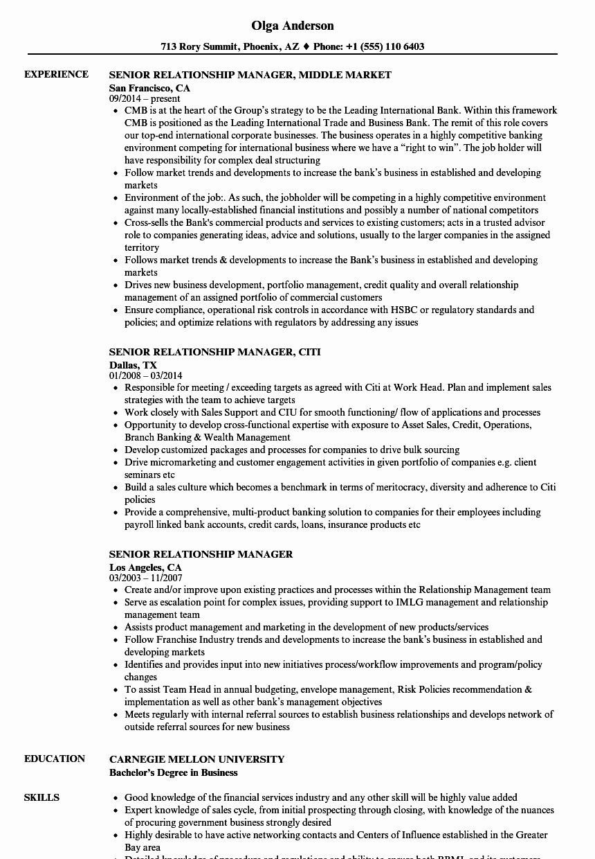 Client Relationship Manager Resume Best Of Senior Relationship Manager Resume Samples