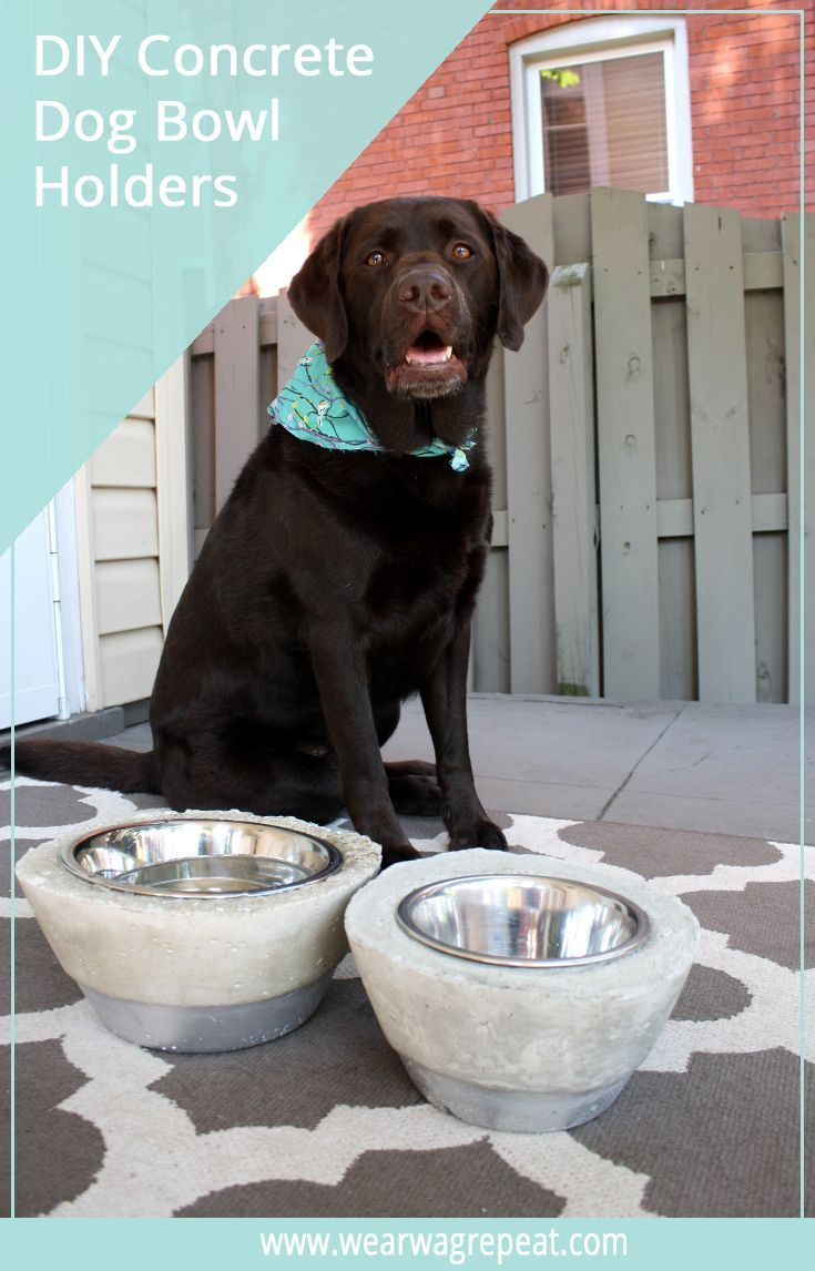 Pin auf DIY für Hunde