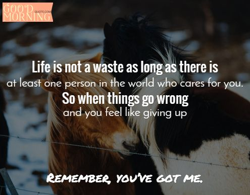 34 Cute Cheer Up Quotes with Images | Cheer, Quotes images ...