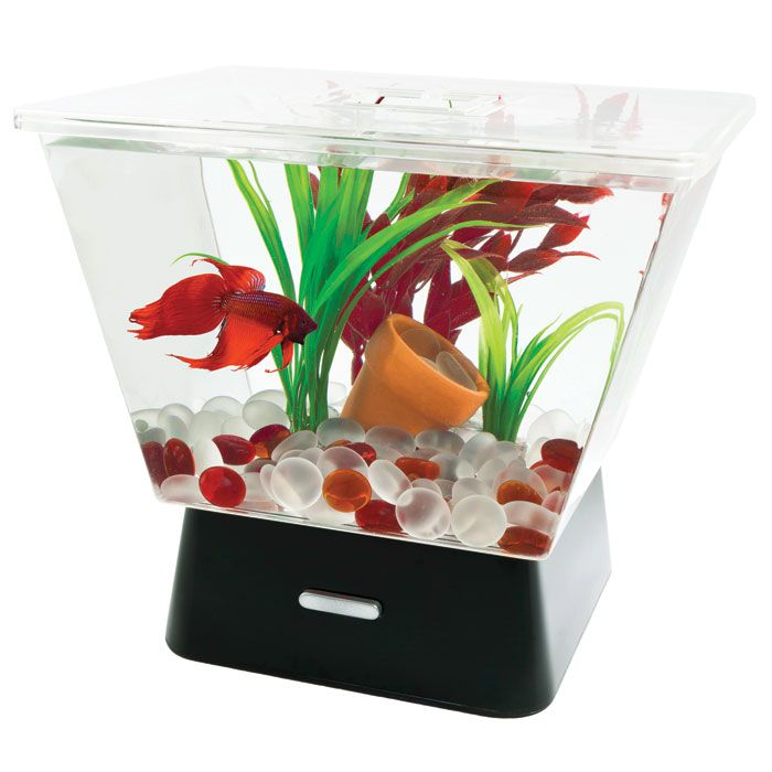 Tetra Led Betta Tank 1 Gal Thatpetplace