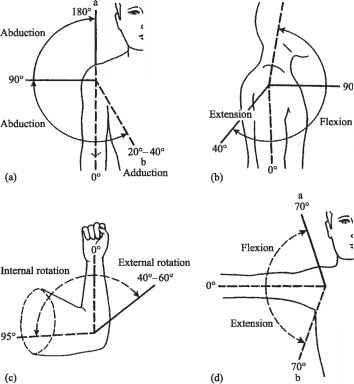 Normal Range Joint Motion Anatomy Pinterest Medical, Physical