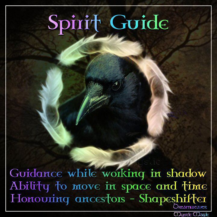 Animal Guide: YES!!! Raven Is My Totem Spirit Guide....Love This