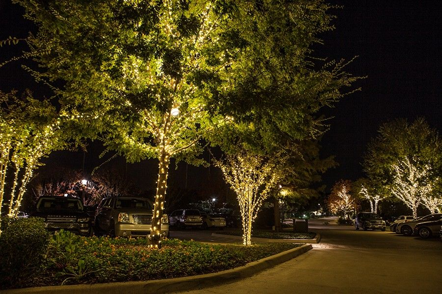 Dallas Landscape Lighting Gallery Houston