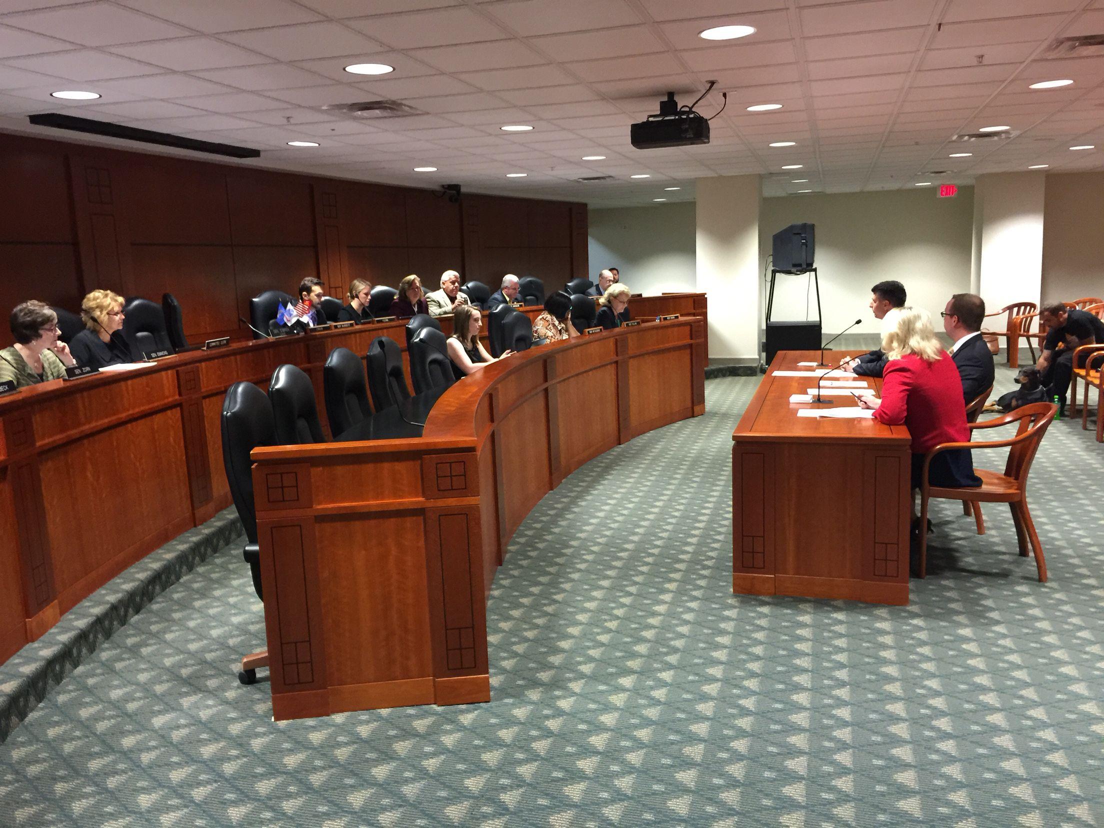 Rare joint Michigan Senate House Veterans Affairs
