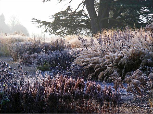 I am light piet oudolf 39 s winter landscapes cottage for Landscapes in landscapes piet oudolf