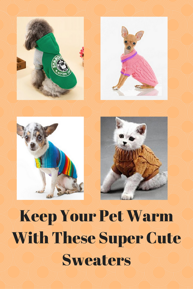 01abac6dbeddc Cute winter sweaters for your pets