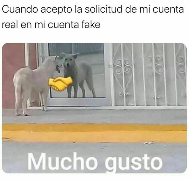 Momos Para To2s V Funny Spanish Memes Memes Funny Memes