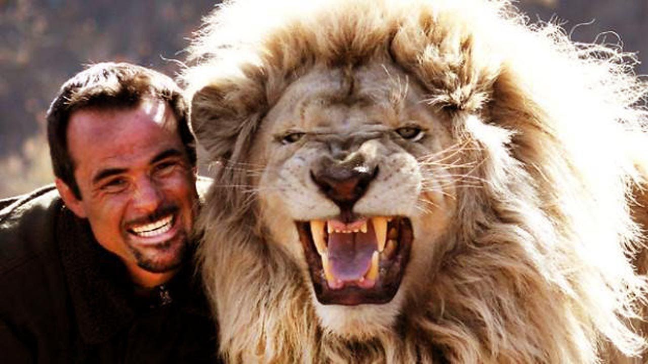 My Lion Family Kevin Richardson Wild discovery channel