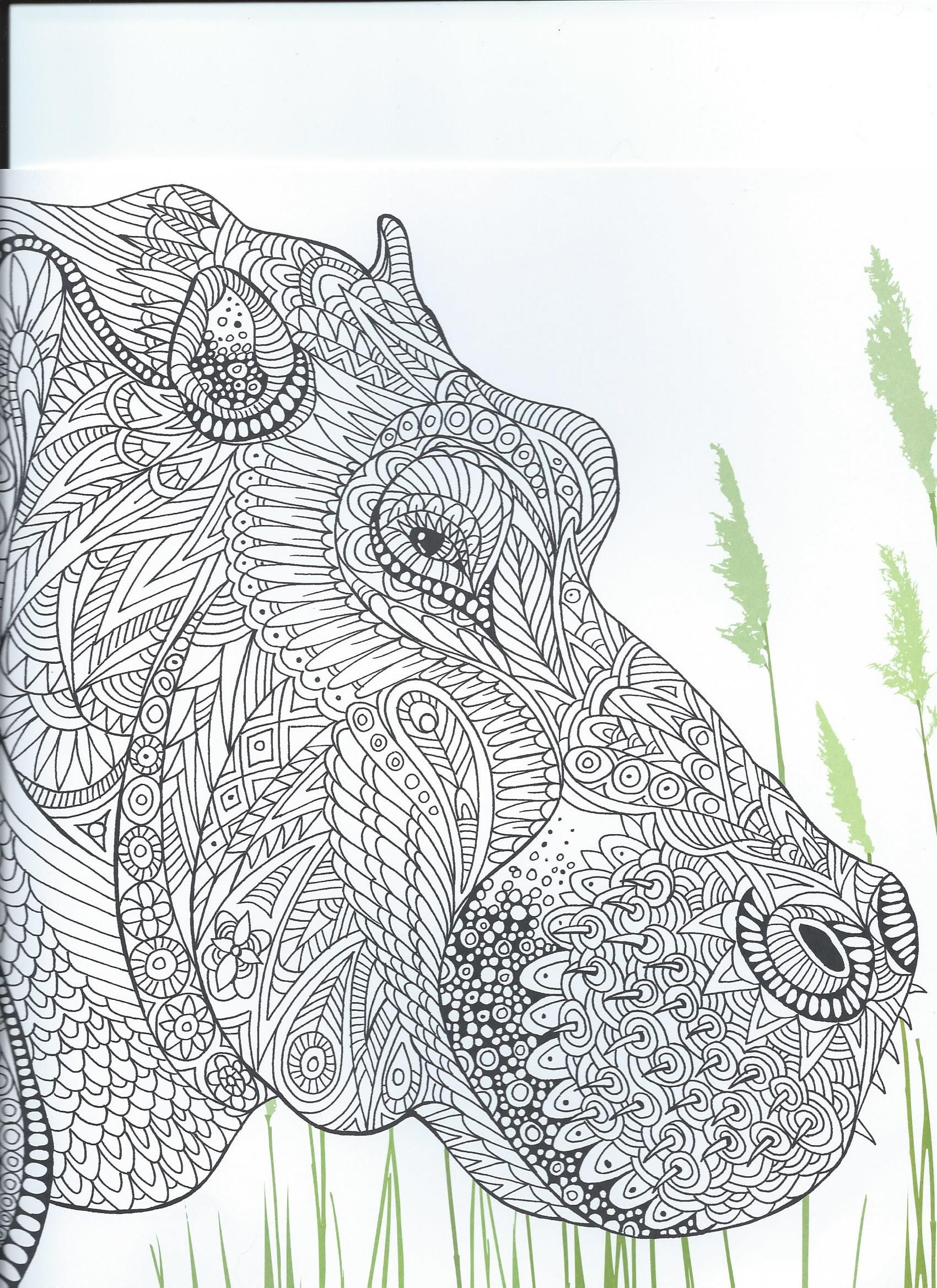 From the coloring book \