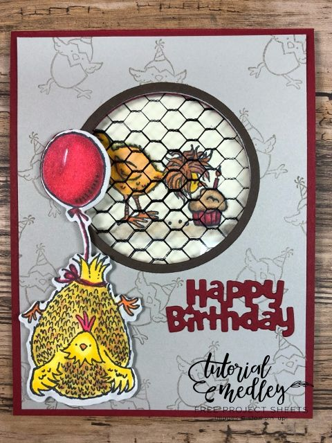 Hey Chick and Hey Birthday Chick 12 Cards