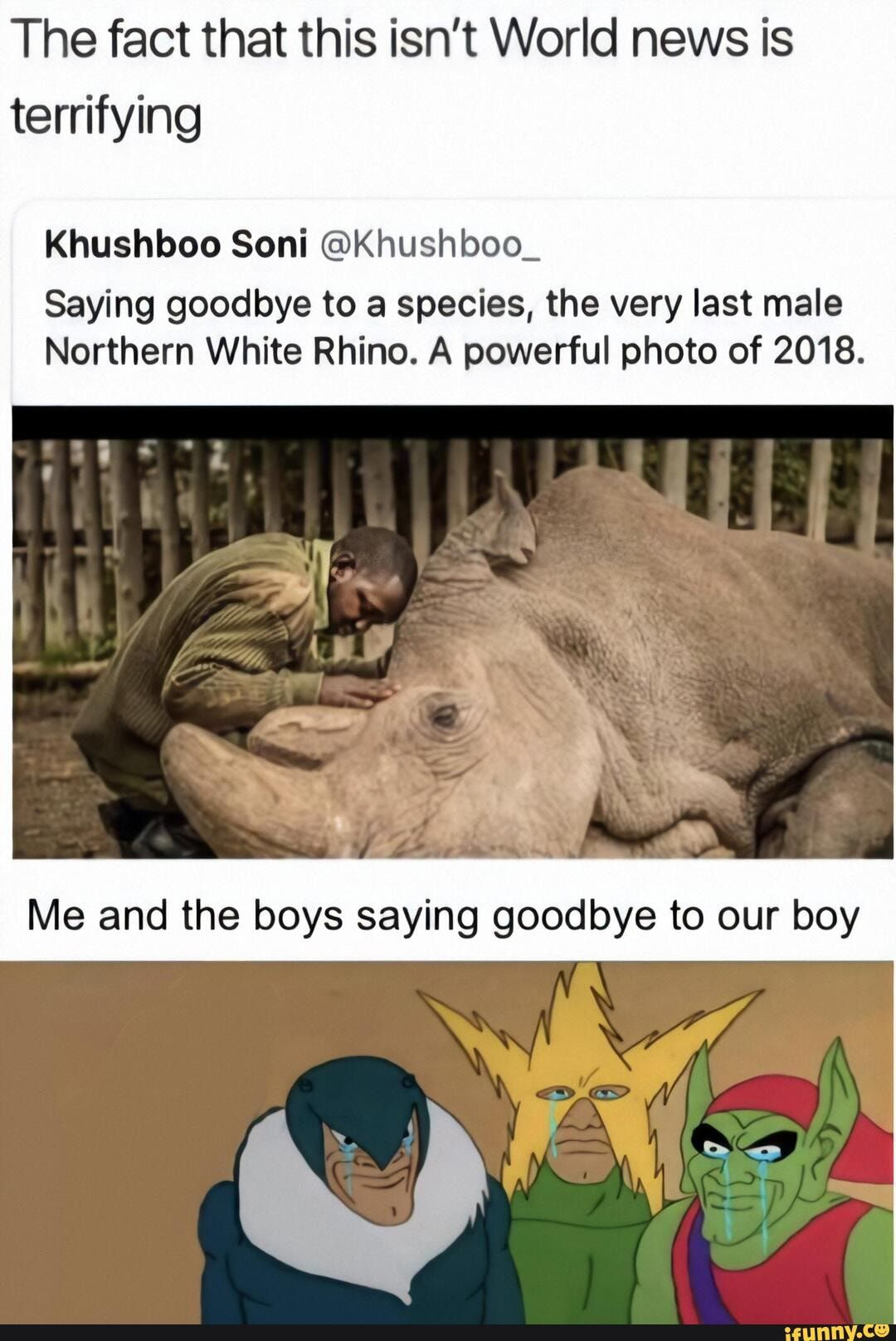 The Fact That This Isn T World News Is Terrifying Khushboo Soni Khushboo Saying Goodbye To A Species The Very Last Male Northern White Rhino A Powerful Phot Fun Facts Funny Pictures