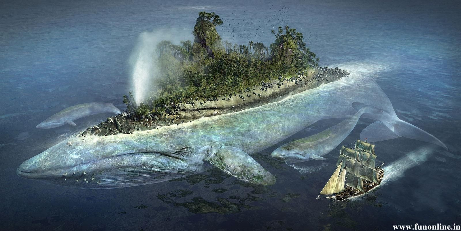 beautiful painting of blue whale caring entire island jpg 1600
