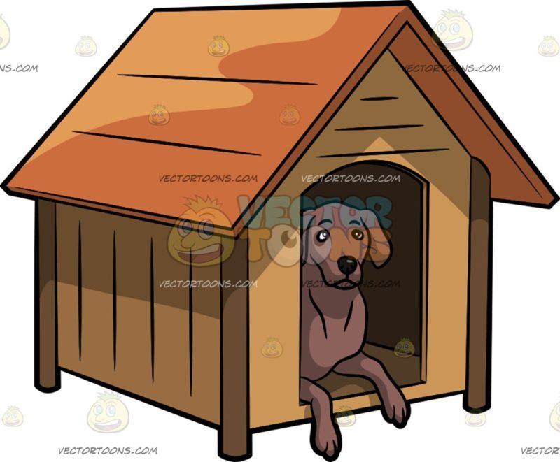 An Alerted Dog In A Dog House Dog House Wooden Dog House