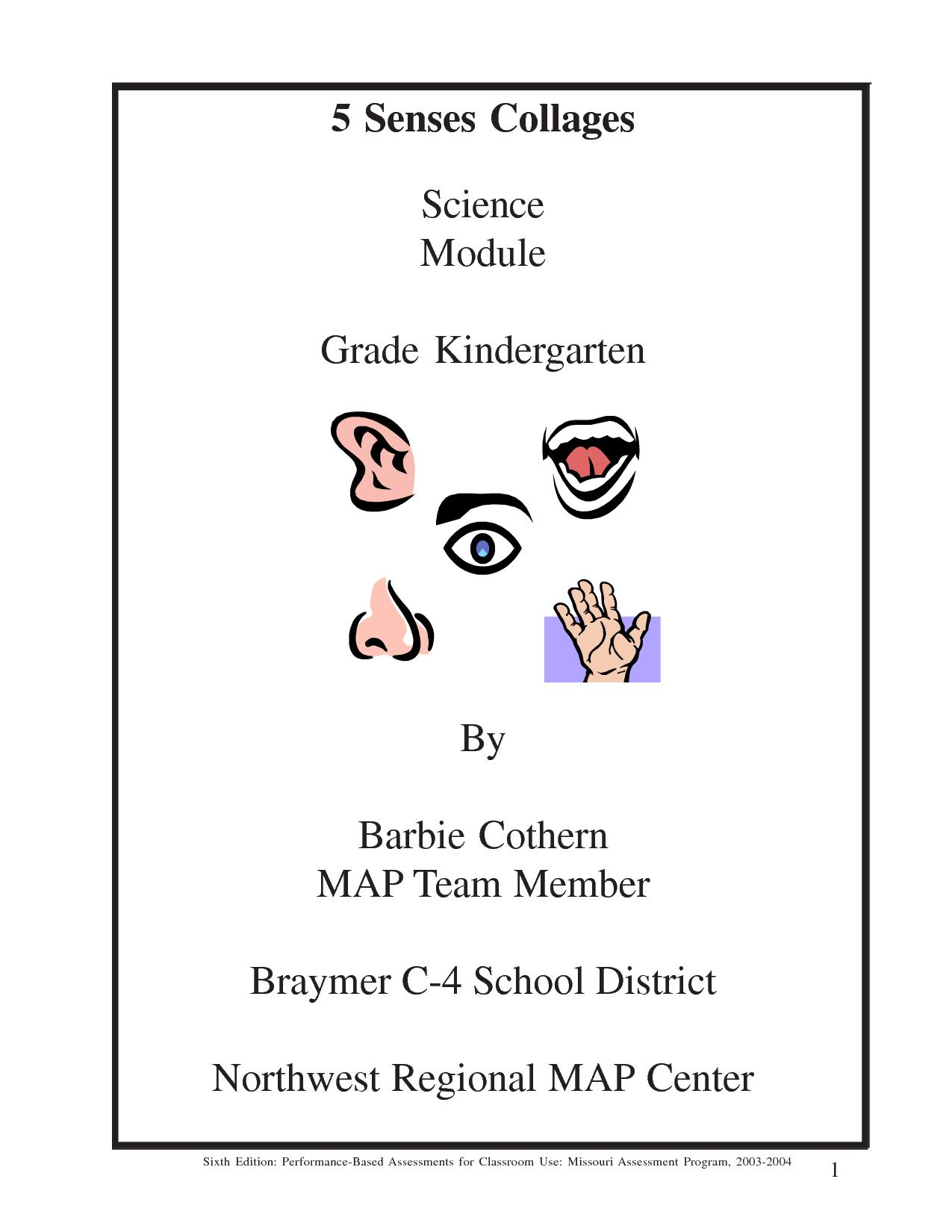 Kindergarten Five Senses Touch