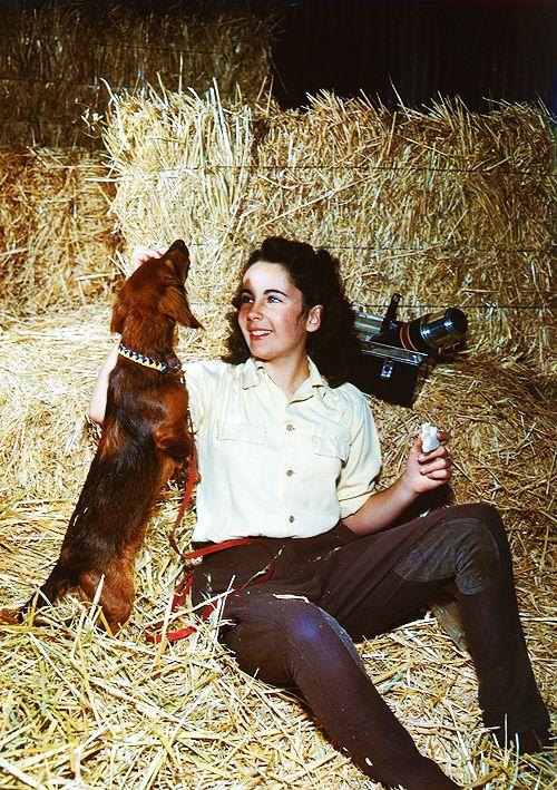 She Devoured Men The Way She Devoured Cigarettes Elizabeth Taylor Richard Burton Elizabeth Taylor Lady Elizabeth