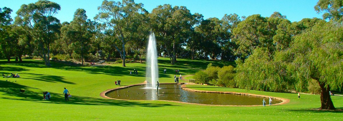Kings Park, Perth, Western Australia | Urban Parks Around the World