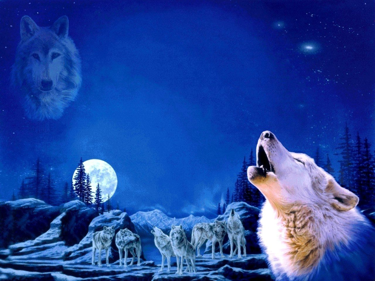 Anime Wolf Pack WOLF PACK Wallpaper The beautiful and