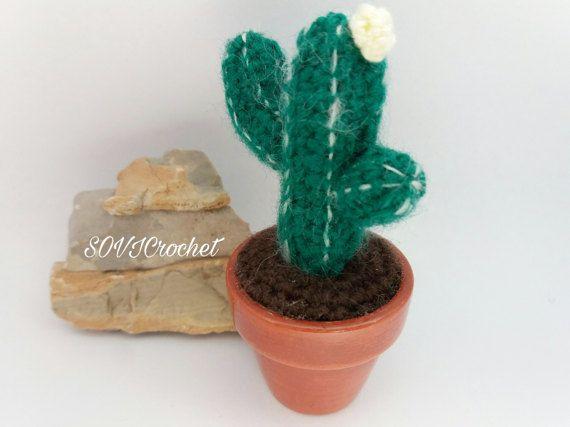 Mini cactus del deserto  verde scuro con fiore 8.00