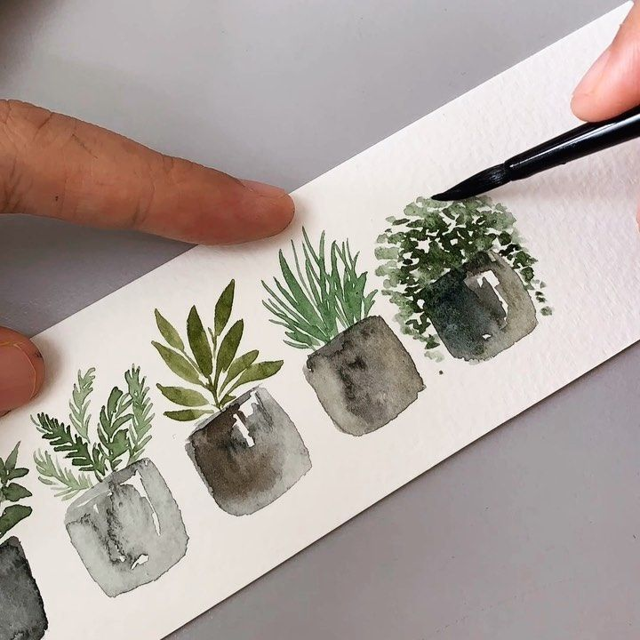 Tutorial : Potted plants. #artbyzafikha . : : Paint : @schmincke_official Brush : @silverbrushltd Black Velvet (Round 4) Paper :… #watercolorart