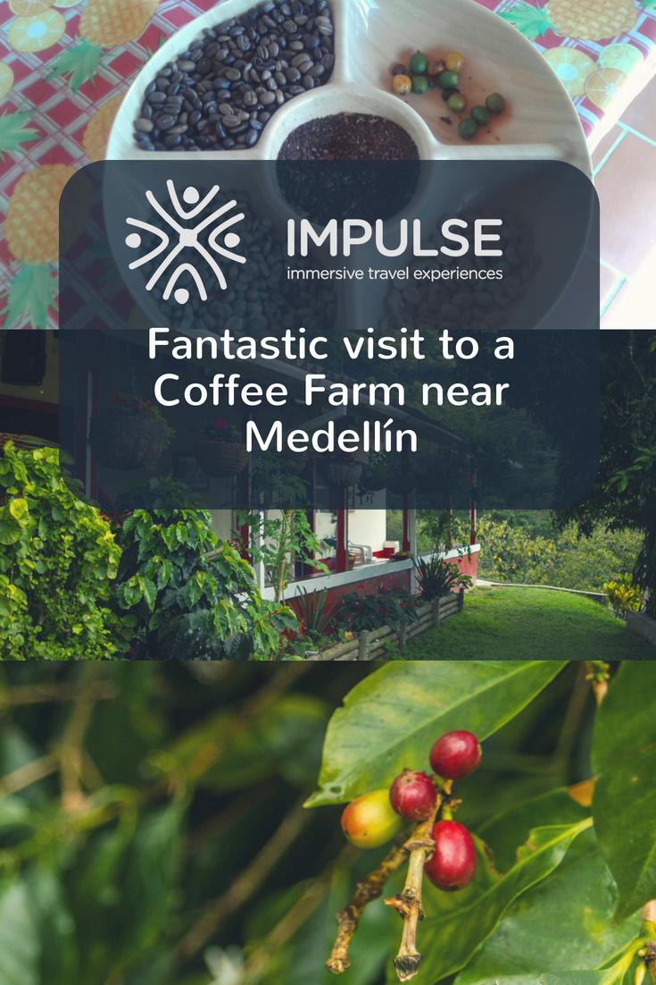 Fantastic Visit to a Coffee Farm Near Medellín Coffee