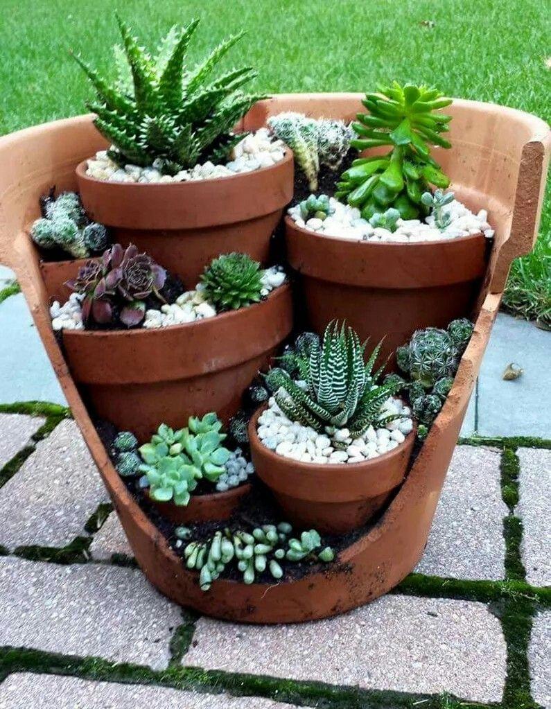 Pin De Carmen En Soculentas Pinterest Plantas Crasas Crasas Y  ~ Macetas Originales Para El Jardin