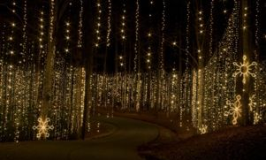 Callaway Gardens Christmas.Fantasy In Lights At Callaway Garden One Of My Favorite