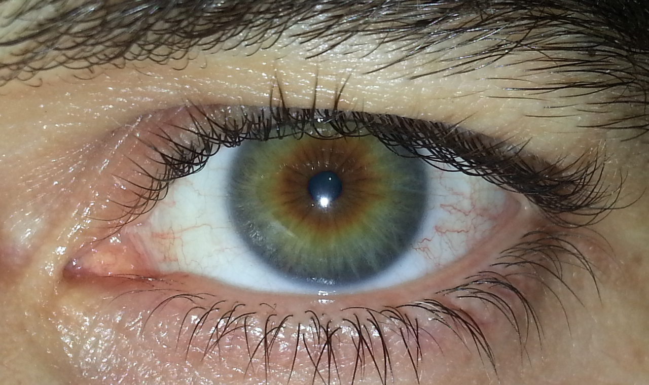 A multicoloured eye containing, grey, green, amber and