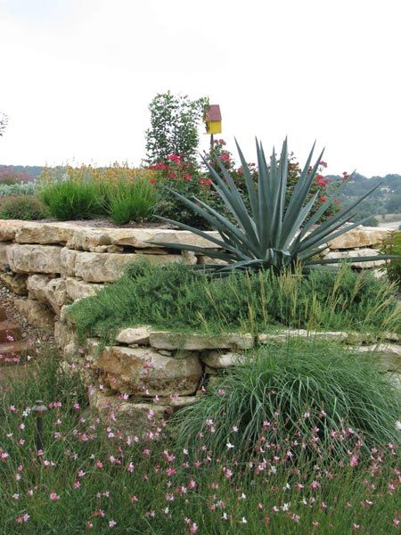hill country style landscape