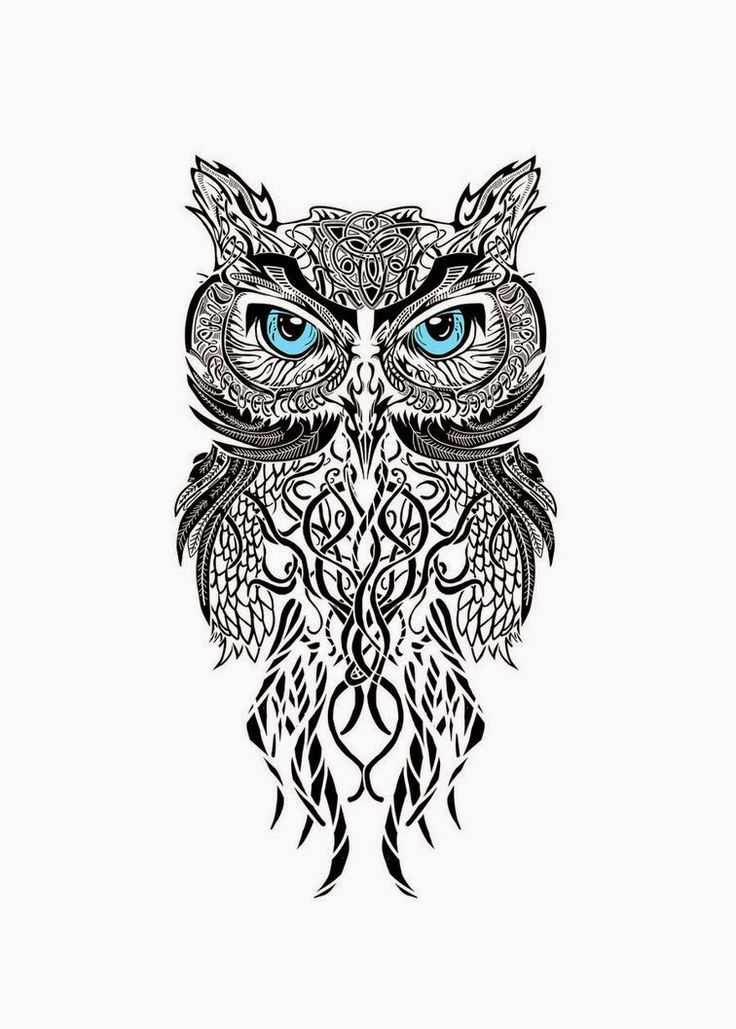 Image Result For Owl Tattoos Small Tribal Black And