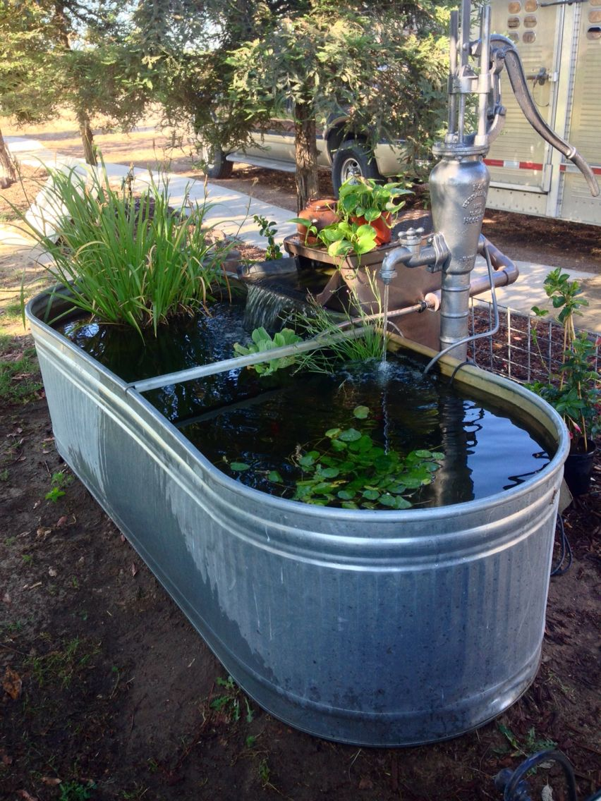 Attractive Our metal water trough, water plants, antique well pump and Savio  MG26