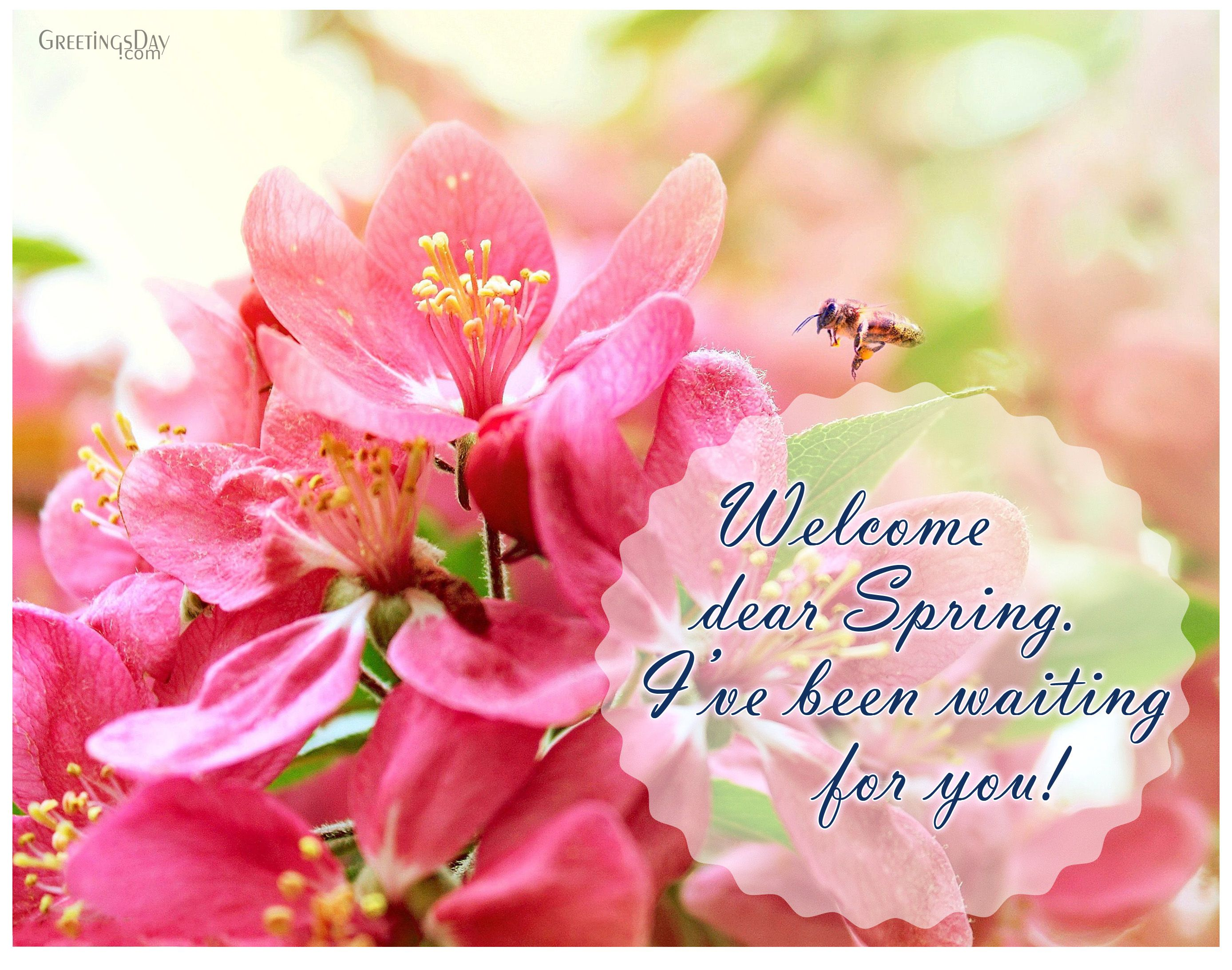 Welcome dear spring ive been waiting for you welcome spring pics spring pics kristyandbryce Gallery