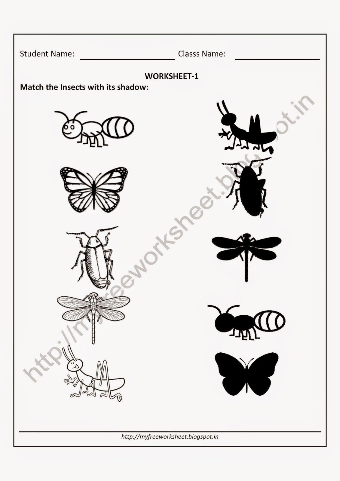 Science Worksheets For Kindergarten Free Kindergarten