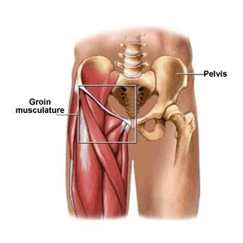 Groin Pain in Front Of | Groin Injury