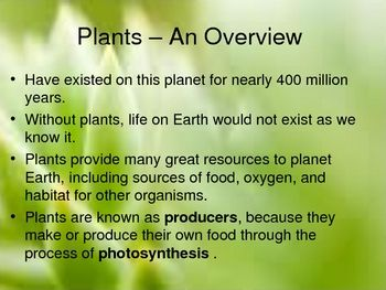 Free Science Powerpoint - Plant Structure and Function
