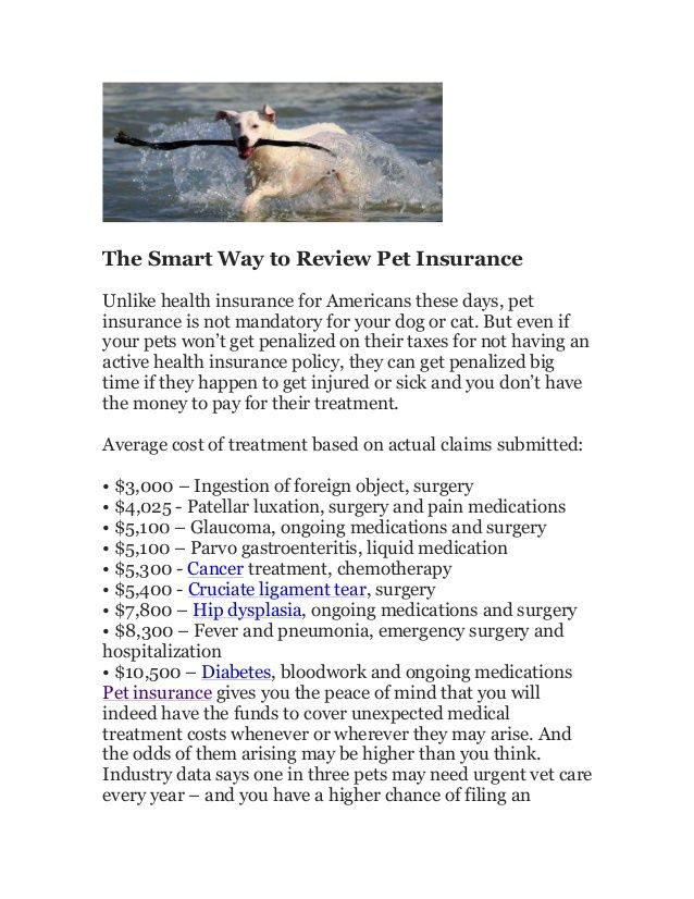 https://www.petinsuranceu.com/pet-insurance-reviews/  Pet insurance reviews updated for 2016. Review top plans to find the pet insurance coverage that's right for your dog or cat. Read pet insurance review summaries to get key details about claim payments, reimbursements, exclusions and pre-existing conditions