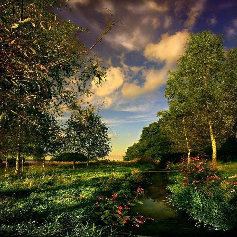 Beautiful Nature Video Download: Nature Wallpapers Free Download For Mobile