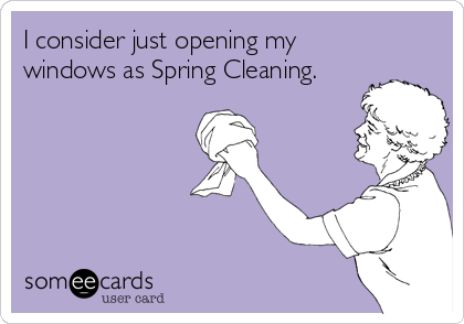 I Consider Just Opening My Windows As Spring Cleaning Funny Quotes Someecards Funny Bones Funny