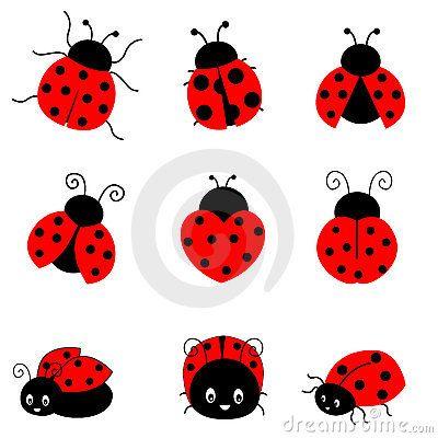 Ladybug Royalty Free Stock Photo Image 19296475 Ladybird Drawing Bug Tattoo Lady Bug Tattoo