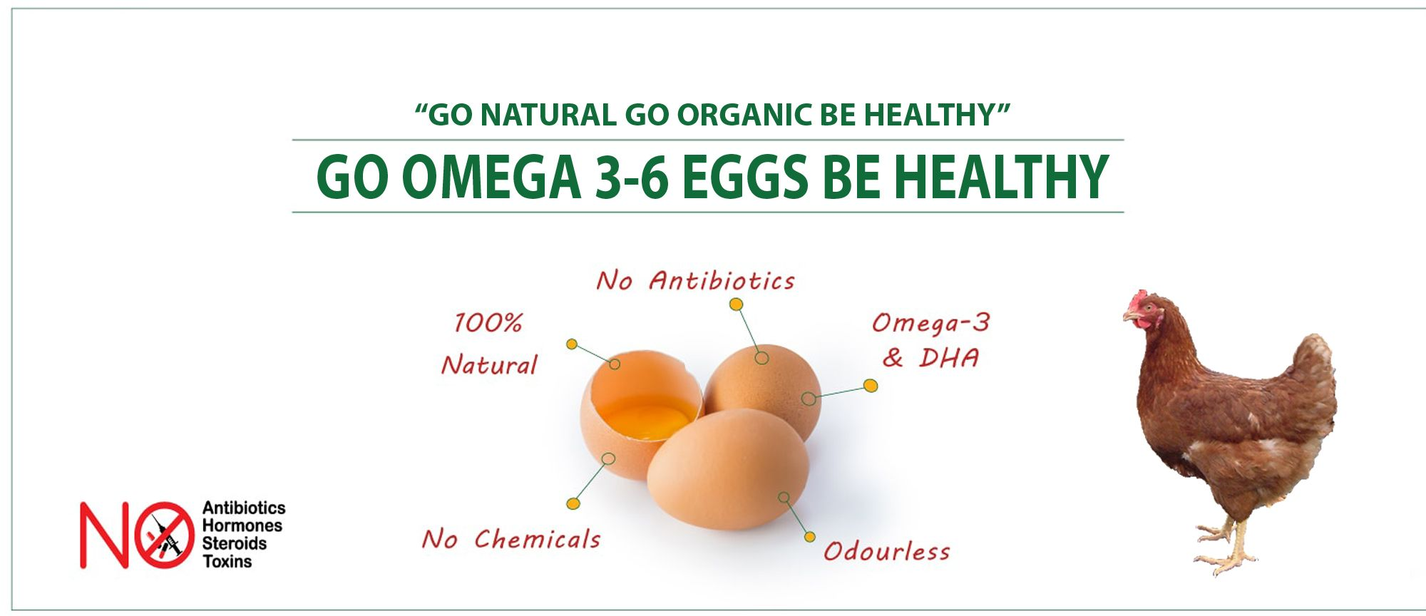 Pin by Omega36 Farms on Omega 36 Going natural, Poultry