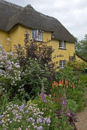 Budlake Old Post Office And The Cottage Garden In June Killerton Devon Cottage Garden Beautiful Gardens Country Cottage