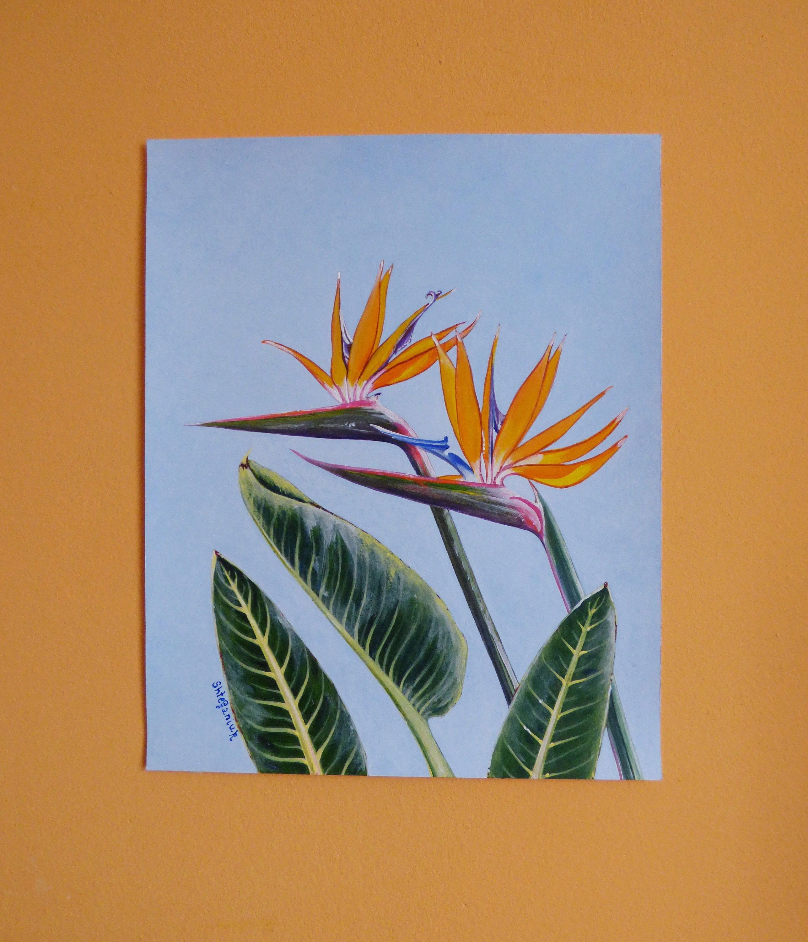 Bird Of Paradise, Strelitzia, 10″x8″, Tropical Plant, Hawaiian Flower, Acrylic on watercolor paper, original hand painted artwork, floral