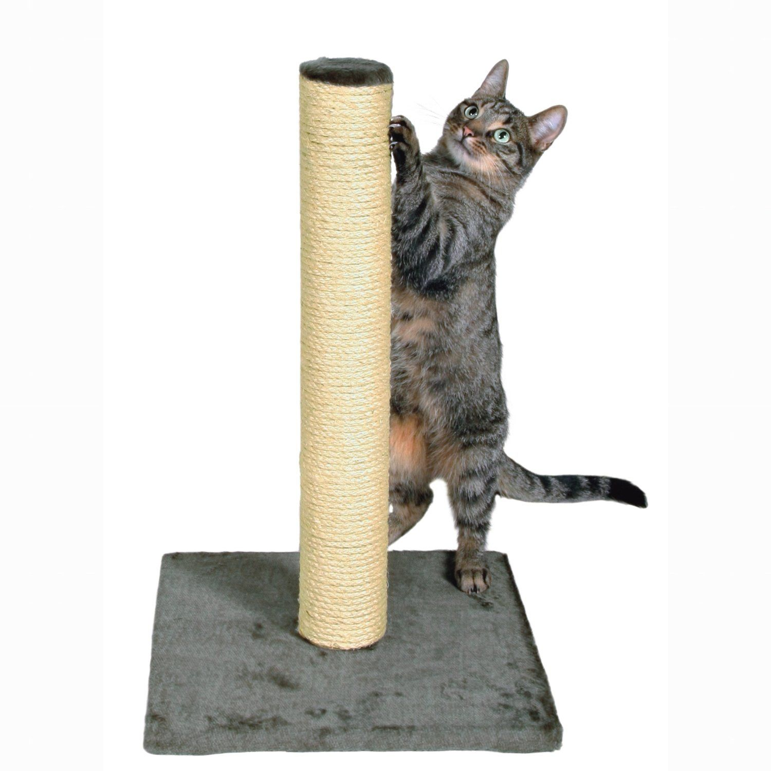 trixie parla scratching post  cat scratching posts  pinterest  -  cm cat scratching post in grey  trixie parla post is wrapped innatural sisal and has a plush cover on the base suitable for cats of allages