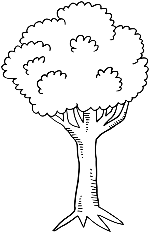 Photo Coloriage Arbre.Coloriage Arbres A Imprimer Ayk World Home Decor Decor Et Decals