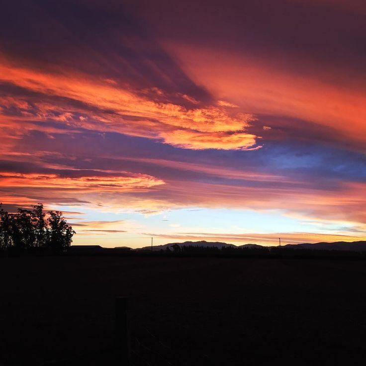 #skyporn  #newzealand  #newzealandvacations  #newzealandphotography  #nzmustdo  #nzimagery  #nztravelreview  #landscapephotography  #outdoors  #adventure  #explore  #sunset  #happymonday  #sunsets   #wonderfulglobe  #travelawesome  #shewentwild  #bestvacations  #nature  #thisisnz   #love_new_zealand  #nz  #beautifuldestinations  #ig_newzealand  #realmiddleearth  #countrylife  #kiwipics  #iphonephotography  #natgeo  #globeshotz #Canterbury! The sky is on fire in Canterbury! ? . . .
