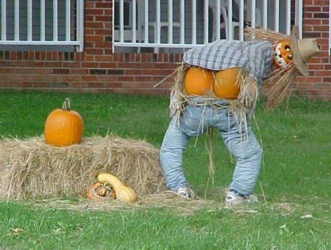 Scarecrow cute stuff Pinterest Scarecrows - fun homemade halloween decorations