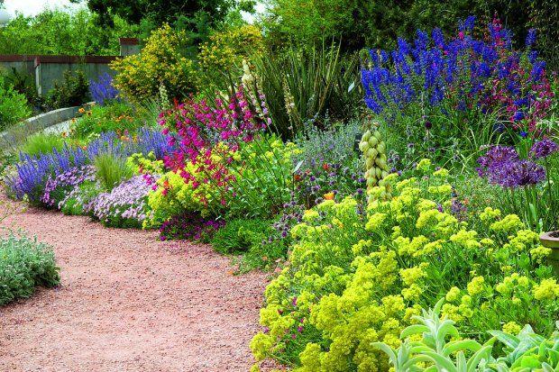 Rosliny Okrywowe Niskie Projektowanie Pielegnacja Porady Outdoor Landscaping Denver Botanic Gardens Smart Garden