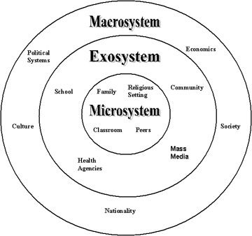the bioecological model of human development has four basic systems The basic systems within bronfenbrenner's bioecological model of human development are intertwined and reliant on each other in order to function correctly.